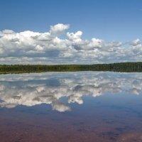 Круглое озер :: Владимир Питерский
