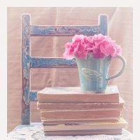 Про старые книжки и нежность :: Оксана fmc☮driver