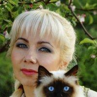 Ах , эти голубые глазки! :: Светлана Мурзина