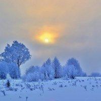 Зимнее солнце. :: Игорь Рудяк