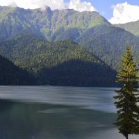 На озере Рица :: Геннадий Ячменев
