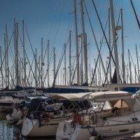Яхты и мачты :: Vladimir Dunye