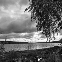 Непогода. :: Валерий Молоток