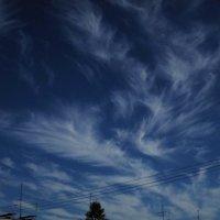 Волшебное небо... :: Павел Зюзин