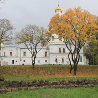 Золота осень :: Света Чубук
