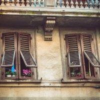 Окна Флоренции :: Ксения Базарова