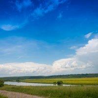 Летний пейзаж :: Алексей Кошелев