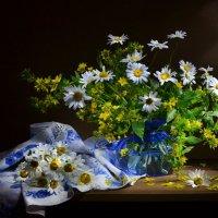 Ромашковый рай... :: Валентина Колова