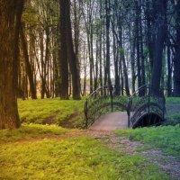 Старый парк . :: Алла Мещерякова