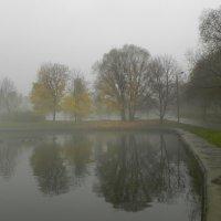 Туман :: Анатолий Цыганок