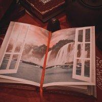 Окно в мир :: Ксения Кузина