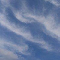 Небо. :: Ирина