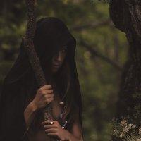 Тайны нашего леса :: Sergey Lexin