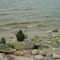 ловись рыбка большая и....большая) :: Oxi --