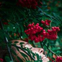 Окунувшись в цветение :: Гаяне Авдалян