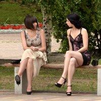 Беседы на скамейке :: Владимир Болдырев