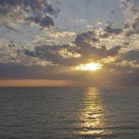 Солнечная дорожка. :: Ирина Нафаня