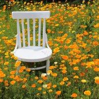 Присаживайтесь :) :: Mariya laimite