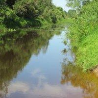 Река Глушица. :: Сергей Кирилловский