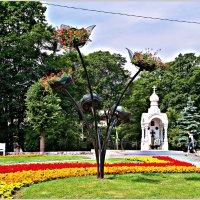 Сквер у площади Победы. :: Валерия Комова