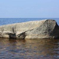 Ладожское озеро :: Татьяна