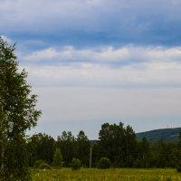 Лето в деревне. 5 :: Сергей Екимовских