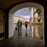 Ах, эти летние дожди... :: Лариса Шамбраева