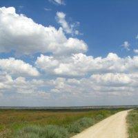 По дороге с облаками :: Алина