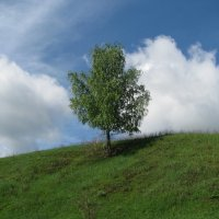 На семи ветрах. :: Михаил Болдырев