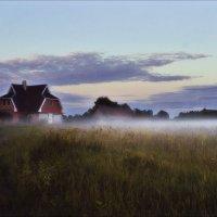 Пушистым покрывалом  туман поля укрыл..... :: Елена Kазак