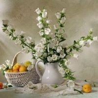 С цветами и абрикосами :: Марина Орлова