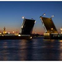Дворцовый мост :: Елена Герасимова