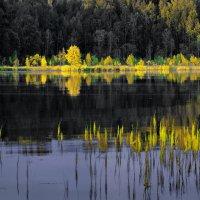 Вечер на озере :: Валерий Талашов