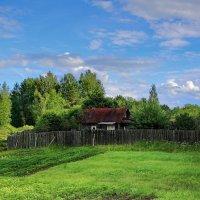 В деревне у бабушки... :: Tatiana Markova