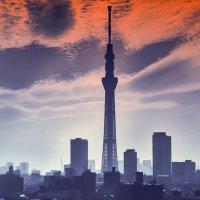 Токио :: Slava Hamamoto