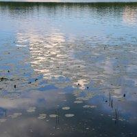 В реку смотрятся облака... :: Танюша Коc