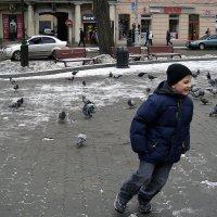 Детская шалость - голубей гонять... :: Тарас Грушивский