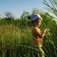 прогулка в высокой траве :: Мария Мильчинская