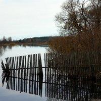 Паводок :: Igor Khmelev