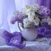 Последний день весны... :: Валентина Колова
