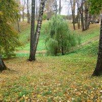 Осень в Пушкинских горах (этюд 5) :: Константин Жирнов