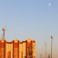 Луна при закате :: Aнна Зарубина