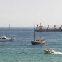 Утро на Красном море. :: Жанна Викторовна