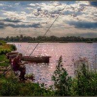 На вечерней зорьке :: Sergey Komarov