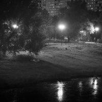Летняя ночь... :: Caba Nova