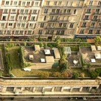 Крыши Парижа. :: Екатерина Артамонова