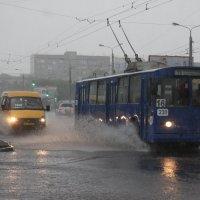 В Омске дождь :: Savayr