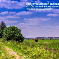 Дорога :: Игорь Николаев