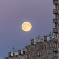 Большая Луна :: Денис Атрушкевич
