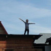 На крыше весело стоять :: Света Кондрашова